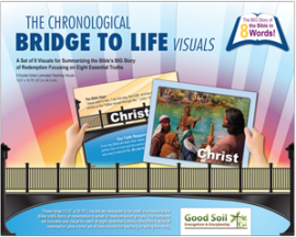 ChronoBridge Teaching Visuals