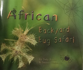 African Backyard Bug Safari